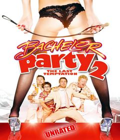 فيلم Bachelor Party 2: The Last Temptation 2008 مترجم