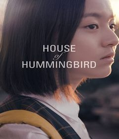 فيلم House of Hummingbird 2018 مترجم